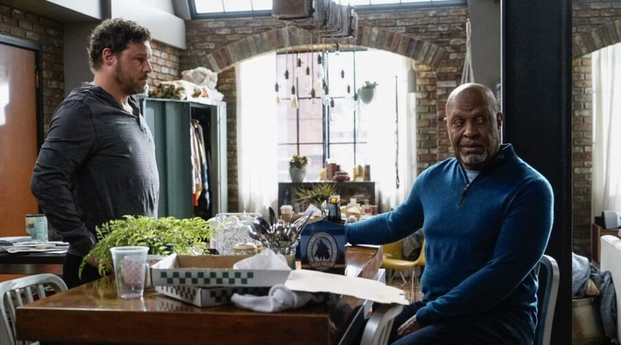 Grey's Anatomy 16 Justin Chambers e James Pickens Jr. sono Alex Karev e Richard Webber credits FOX Italia