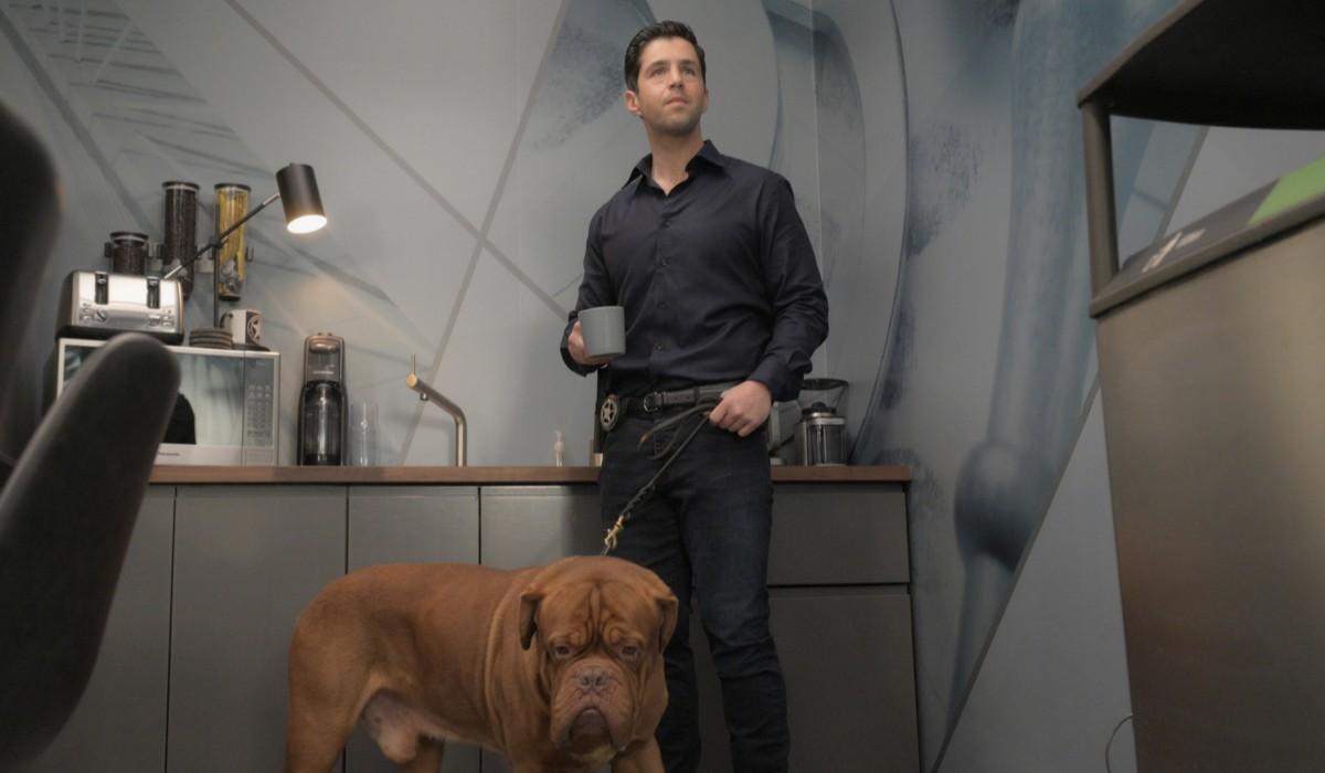 """Da sinistra: il cane Hooch e Scott Turner (Josh Peck) in una scena di """"Turner e il Casinaro - La Serie"""". Credits: 20th Television/Disney Plus."""