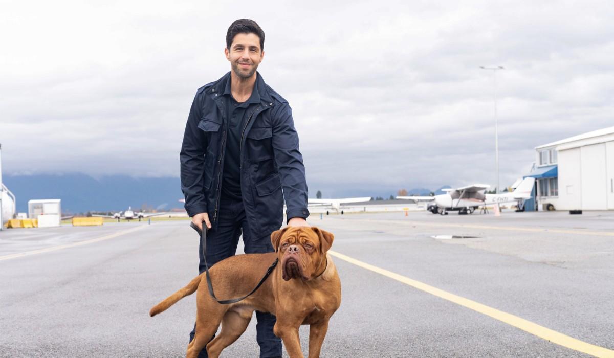 """Da sinistra: Scott Turner (Josh Peck) e il cane Hooch in una scena di """"Turner e il Casinaro - La Serie"""". Credits: 20th Television/Disney Plus."""